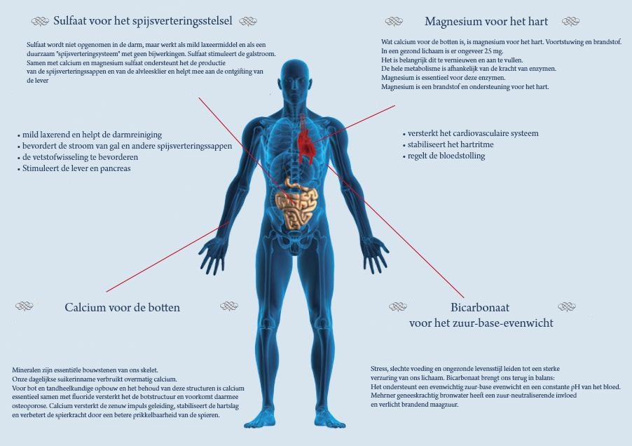 Wat geneeskrachtig bronwater met het lichaam kan doen
